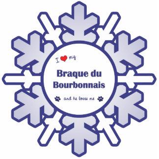 Amo mi Braque du Borbonés (el perro masculino) Adorno Fotoescultura