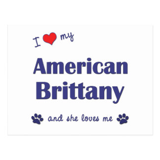Amo mi Bretaña americana (el perro femenino) Tarjetas Postales
