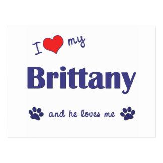 Amo mi Bretaña (el perro masculino) Tarjetas Postales