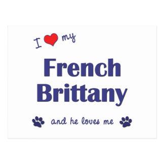 Amo mi Bretaña francesa (el perro masculino) Postales
