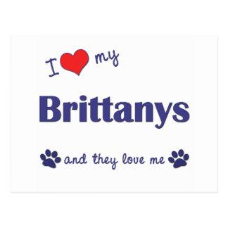 Amo mi Brittanys (los perros múltiples) Postal