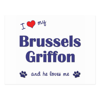 Amo mi Bruselas Griffon (el perro masculino) Postal