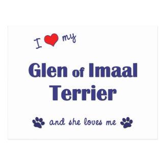 Amo mi cañada de Imaal Terrier (el perro femenino) Postal