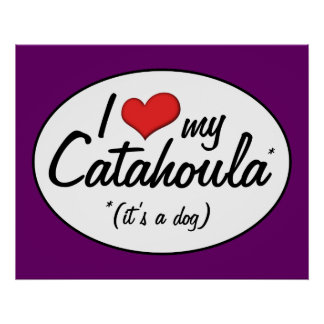 Amo mi Catahoula (es un perro) Posters