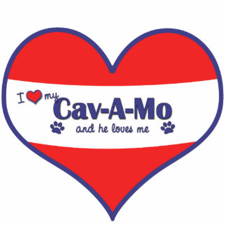 Amo mi Cav-UNO-MES (el perro masculino) Adorno Fotoescultura