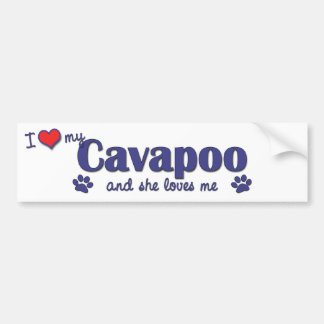 Amo mi Cavapoo (el perro femenino) Pegatina Para Auto