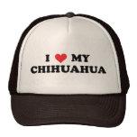 Amo mi chihuahua gorro