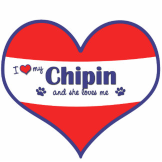Amo mi Chipin (el perro femenino) Adorno Fotoescultura
