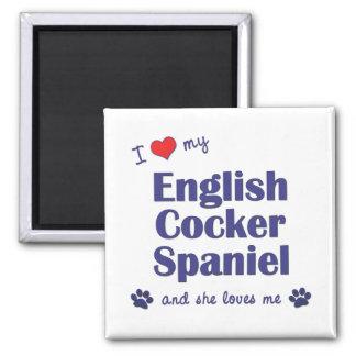Amo mi cocker spaniel inglés (el perro femenino) imanes de nevera