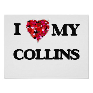 Amo MI Collins Póster
