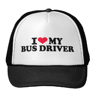 Amo mi conductor del autobús gorros bordados