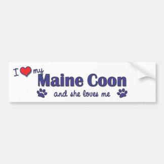 Amo mi Coon de Maine (el gato femenino) Pegatina Para Auto
