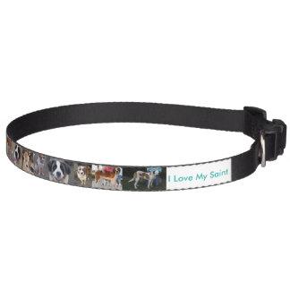 Amo mi cuello de perro del santo collares para perros