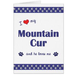 Amo mi Cur de la montaña (el perro masculino) Tarjeta Pequeña