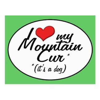 Amo mi Cur de la montaña (es un perro) Postal