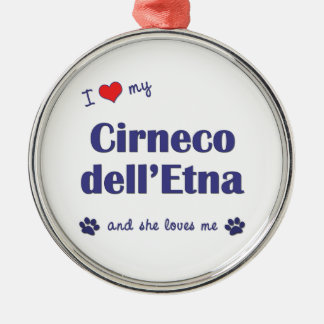 Amo mi dell Etna de Cirneco el perro femenino Ornato