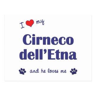 Amo mi dell Etna de Cirneco el perro masculino Postal