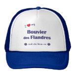 Amo mi DES Flandres (el perro femenino) de Bouvier Gorros Bordados