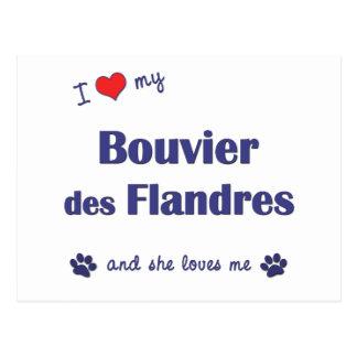 Amo mi DES Flandres (el perro femenino) de Bouvier Tarjetas Postales