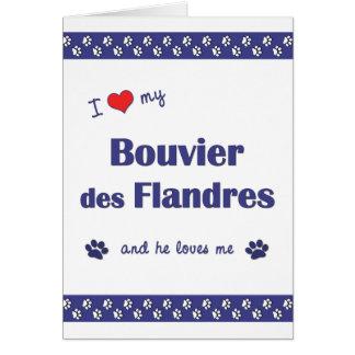 Amo mi DES Flandres (el perro masculino) de Bouvie Tarjeta Pequeña