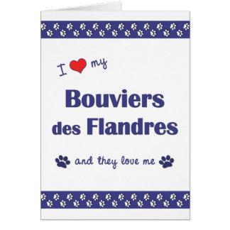 Amo mi DES Flandres (los perros múltiples) de Bouv Tarjeta Pequeña