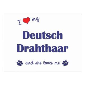 Amo mi Deutsch Drahthaar (el perro femenino) Tarjeta Postal