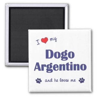 Amo mi Dogo Argentino (el perro masculino) Imán Cuadrado