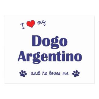 Amo mi Dogo Argentino (el perro masculino) Tarjeta Postal