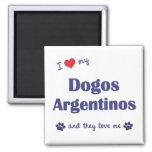 Amo mi Dogos Argentinos (los perros múltiples) Imanes De Nevera