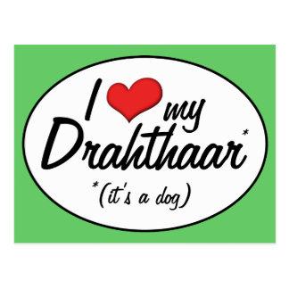 Amo mi Drahthaar (es un perro) Tarjetas Postales