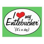 Amo mi Entlebucher (es un perro) Tarjetas Postales