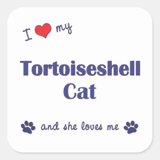 Amo mi gato de la concha (el gato femenino) calcomania cuadradas personalizada
