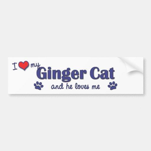 Amo mi gato del jengibre (el gato masculino) etiqueta de parachoque