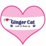 Amo mi gato del jengibre (el gato masculino) escultura fotografica