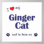 Amo mi gato del jengibre (el gato masculino) poster