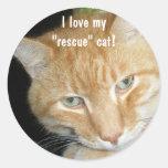 "¡Amo mi gato del "" rescate""! Pegatinas"