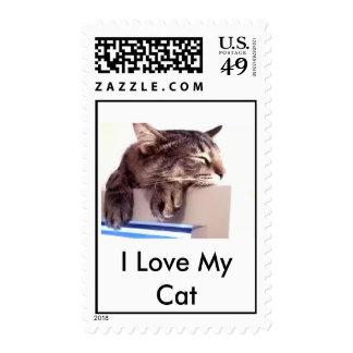 Amo mi gato envio