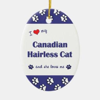 Amo mi gato sin pelo canadiense el gato femenino ornato