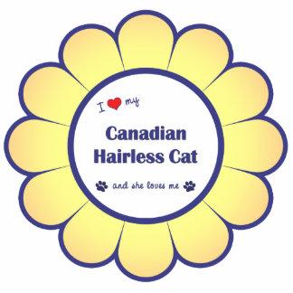 Amo mi gato sin pelo canadiense el gato femenino esculturas fotográficas