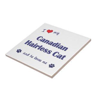 Amo mi gato sin pelo canadiense el gato masculino azulejo cerámica
