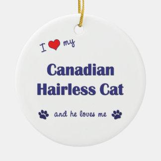 Amo mi gato sin pelo canadiense el gato masculino adorno