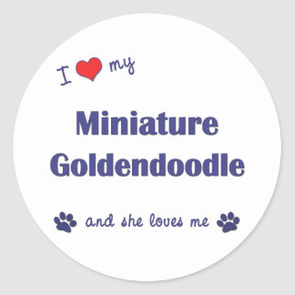 Amo mi Goldendoodle miniatura (el perro femenino) Pegatina Redonda
