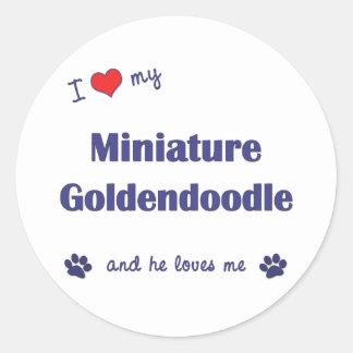 Amo mi Goldendoodle miniatura el perro masculino Etiquetas Redondas