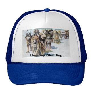 Amo mi gorra del perro de trineo