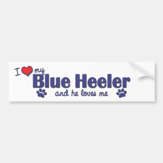 Amo mi Heeler azul (el perro masculino) Etiqueta De Parachoque