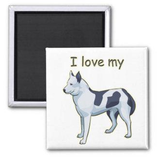 Amo mi husky siberiano imán cuadrado