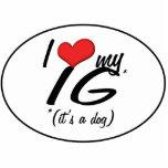 Amo mi IG (es un perro) Esculturas Fotograficas