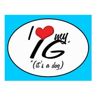 Amo mi IG (es un perro) Postal