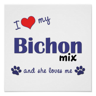 Amo mi impresión del poster de la mezcla de Bichon