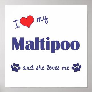 Amo mi impresión del poster de Maltipoo (perro fem
